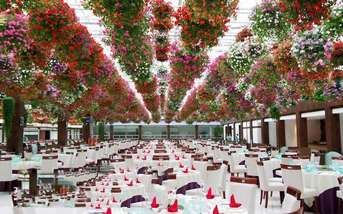 常州花鸟园生态餐厅婚宴预订