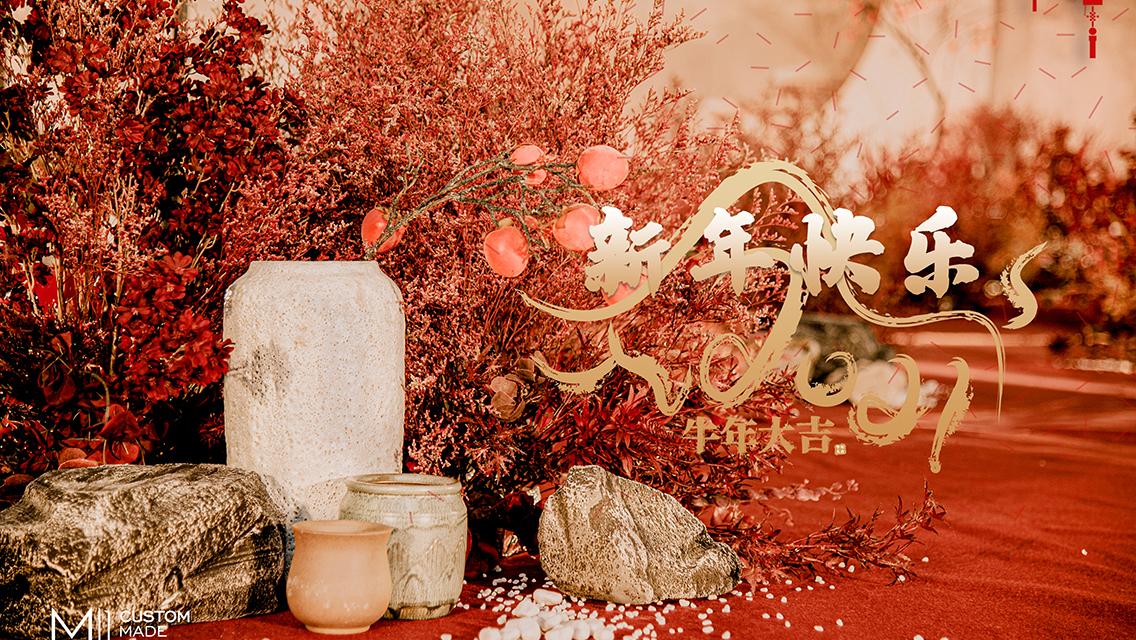 今年春节返乡过年还是就地过年?你怎么选