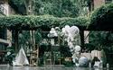 桃江县婚礼策划方案:绿植公园