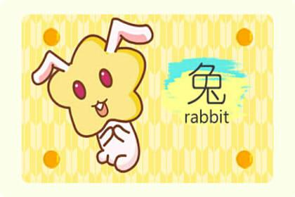 属兔女和马男婚配 男属马女属兔八字合吗