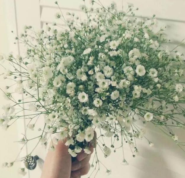 手捧花能自己留下嘛 结婚捧花可以自己留着吗