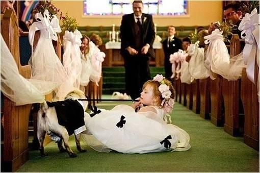 婚礼创意策划方案案例