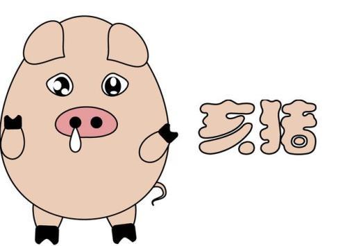属猪的命运如何