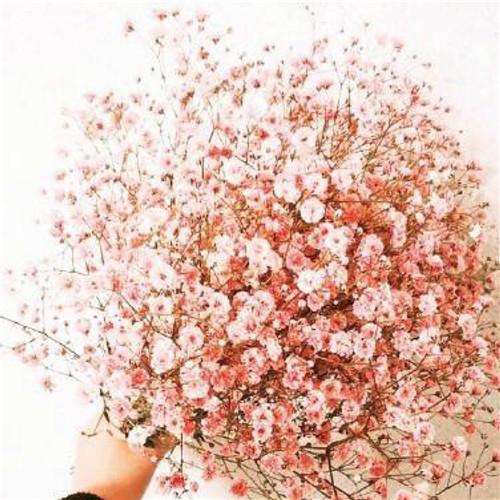 新娘的手捧花可以自己带回家吗