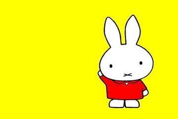 女兔男虎能过一生吗